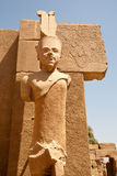 Estátua do Pharaoh imagens de stock