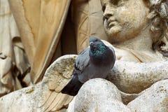 Estátua do pombo fotografia de stock royalty free