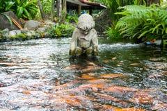 Estátua do querubim na lagoa Fotografia de Stock Royalty Free