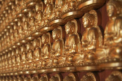 Estátua dourada da Buda Fotos de Stock Royalty Free