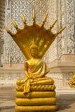 Estátua dourada da Buda, Buda e sete cabeças da serpente em Wat Mai K Imagens de Stock