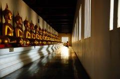 Estátua dourada da Buda com oração imagens de stock royalty free