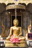 A estátua dourada exterior da Buda Imagem de Stock