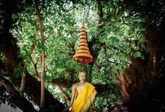 Estátua dourada tailandesa da Buda com guarda-chuva muito-estratificado Fotografia de Stock Royalty Free