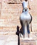 Estátua egípcia antiga de Horus do deus no templo do pátio de Philae imagem de stock
