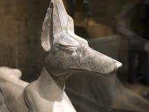 Estátua egípcia antiga do cão Foto de Stock