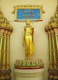 Estátua ereta da Buda no templo budista Foto de Stock
