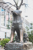Estátua famosa do cão de Hachiko japão como o marco no Tóquio de Shibuya | Turista em Japão Ásia o 30 de março de 2017 Foto de Stock Royalty Free