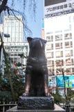 Estátua famosa do cão de Hachiko japão como o marco no Tóquio de Shibuya | Turista em Japão Ásia o 30 de março de 2017 Fotos de Stock Royalty Free