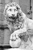 Estátua Florença Toscânia italy do leão Imagem de Stock