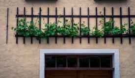 Estátua Florence Italy Foto de Stock Royalty Free
