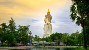 Estátua gigante branca da Buda em Tailândia fotografia de stock royalty free