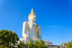 Estátua grande de Buddha Imagem de Stock Royalty Free
