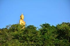 Estátua grande de buddha atrás das árvores Fotografia de Stock Royalty Free