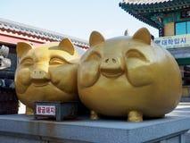 Estátua grande do porco no templo de Haedong Yonggungsa fotos de stock royalty free