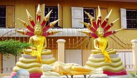 Estátua Ouro-colorida dois da Buda no templo budista Foto de Stock