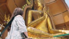 Estátua sightseeing de Buda do touirist da jovem mulher filme