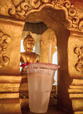 Estátua surpreendente da Buda do ouro no rebaixo dourado com o oferecimento de bebida dado à Buda Imagens de Stock