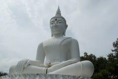 Estátua tailandesa branca da Buda Fotografia de Stock