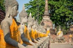 Estátuas alinhadas de buddha Imagem de Stock