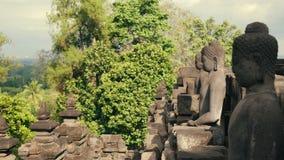 Estátuas da pedra da Buda na parede do templo de Borobudur vídeos de arquivo
