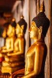 Estátuas de assento da Buda do ouro em Tailândia Fotos de Stock Royalty Free