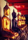 Estátuas de assento de Buddha, Tailândia Fotografia de Stock
