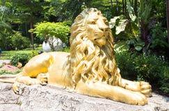 Estátuas de assento do leão dourado Fotografia de Stock