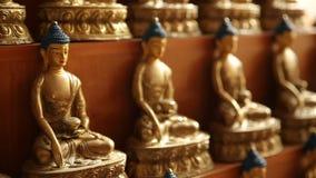 Estátuas de Buddha video estoque