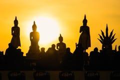 Estátuas de buddha da silhueta no fundo borrado do por do sol tailândia Imagem de Stock