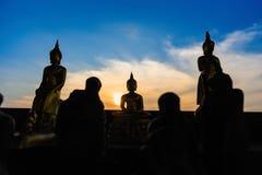 Estátuas de buddha da silhueta no fundo borrado do por do sol tailândia Fotos de Stock Royalty Free