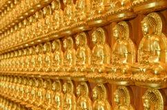 Estátuas de Buddha do ouro Imagens de Stock