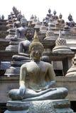 Estátuas de Buddha no templo de Gangaramaya Fotos de Stock Royalty Free