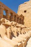 Estátuas de esfinges RAM-dirigidas no templo de Karnak fotos de stock