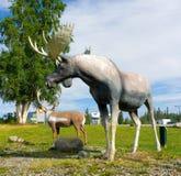 Estátuas dos animais selvagens em um museu exterior no yukon Imagens de Stock