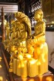 Estátuas douradas de buddha em várias ações Fotografia de Stock
