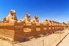 Estátuas egípcias antigas no templo de Karnak fotografia de stock royalty free