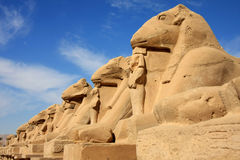 Estátuas no templo de Karnak imagem de stock