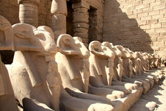 Estátuas no templo de Karnak fotos de stock royalty free