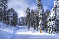 Estância de esqui Krasnaya Polyana SOCHI foto de stock