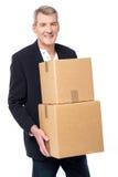Estão aqui seus pacotes! Fotografia de Stock Royalty Free