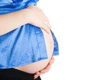 Estómago de la mujer embarazada Foto de archivo libre de regalías