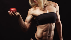 Estúdio disparado da jovem mulher muscular foto de stock royalty free