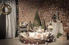 Estúdio natural da árvore do ano novo Fotografia de Stock