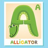A est pour l'alligator Marquez avec des lettres A Alligator blanc animal de vecteur de fonds d'image d'alphabet Image libre de droits