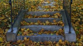 A estação amarela do Dia das Bruxas da queda do outono do foilage sae em um parque público do ina dos stps da caixa da escada na  foto de stock