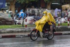 Estação da chuva em Vietname, 3Sudeste Asiático foto de stock royalty free