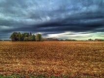 Estação da colheita em ohio Imagens de Stock Royalty Free