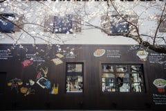 Estação da flor de cerejeira de Japão em Kyoto ao princípio de março todos os anos, Japão imagem de stock royalty free