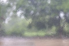 A estação das chuvas, água natural das gotas da chuva do respingo deixa cair na janela de vidro no fundo da árvore da estação das fotografia de stock royalty free